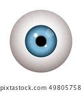 Realistic human eyeball 49805758