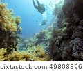 Coral Reef underwater in the sea 49808896