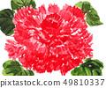 illustration, bloom, blossom 49810337