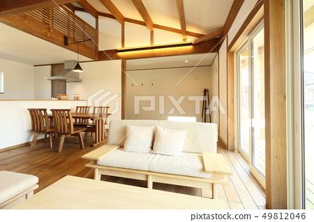 時尚生活的寵物生活設計師的房子 49812046