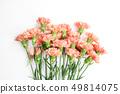 美丽的春天的花朵,生活珊瑚色康乃馨,槲寄生,玫瑰 49814075