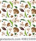 蘑菇 冠军 无缝的 49815009