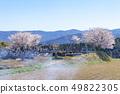 묘지와 벚꽃과 하늘 _ 돗토리 현 구라 요시시 시즈에서 49822305