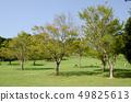 이즈 애니멀 킹덤의 잔디 광장 49825613