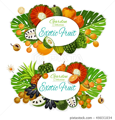 Exotic fruits and tropical berries. Food and drink 49831834