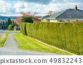 Asphalt passway and green hedgerow along backyard of residential house. 49832243