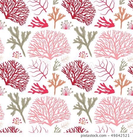 Colorful Sea Coral Pattern 49842521