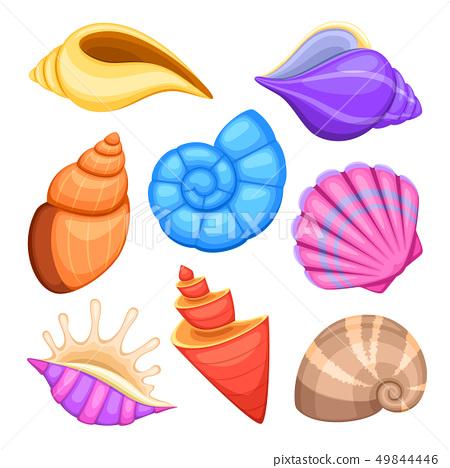 Ocean cockleshells. Cartoon sea shells vector collection 49844446