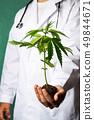 Scientist holding a marijuana branch close up 49844671