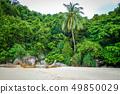 Teluk Pauh beach in Perhentian Islands, 49850029