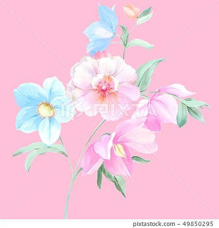 顏色豐富的水彩花卉和牡丹 49850295
