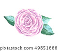Hand Painted Watercolor Flower Vector. Vector Watercolor Flowers. Watercolor Rose Vector. 49851666