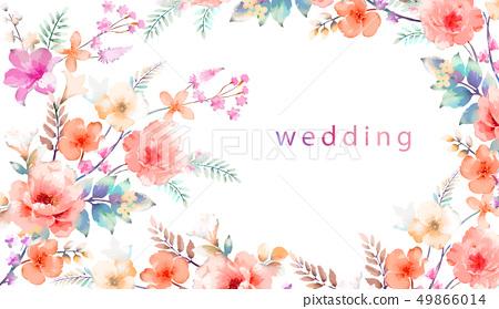 優雅的玫瑰和牡丹花 49866014
