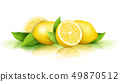Lemons and green leaves isolated on white 49870512