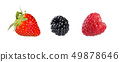 Collection of mixed berries. 49878646