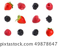 Collection of mixed berries. 49878647