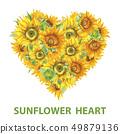 Sunflower heart banner watercolor 49879136