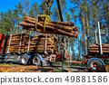 Crane loading logs in the truck. 49881586