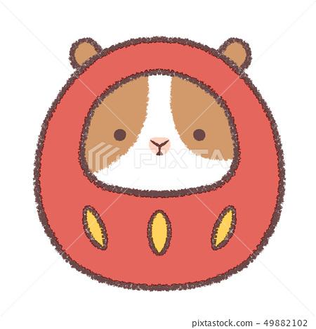 Daruma guinea pig alone 49882102