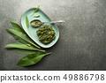 Wild garlic pesto 49886798