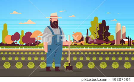 male farmer holding shovel planting green cabbage vegetable farmland field countryside landscape eco 49887504