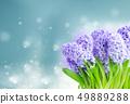 Hyacinth fresh flowers 49889288
