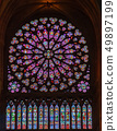 Stained glass window in Notre dame de Paris 49897199