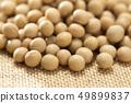 콩 49899837