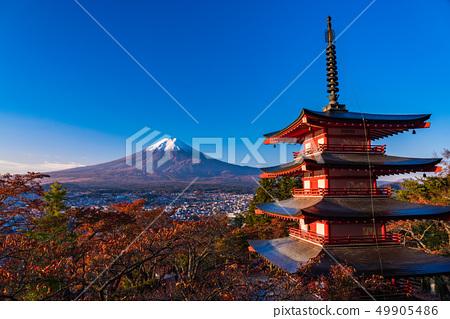Prefecture จังหวัดยามานาชิ》 รับแสงแดดยามเช้าใบไม้เปลี่ยนสีจากสวนชิน - คุรายามะอาซามะ, เจดีย์ชูริโอะ, ชินไซสึ 49905486