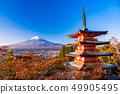 Prefecture จังหวัดยามานาชิ》 รับแสงแดดยามเช้าใบไม้เปลี่ยนสีจากสวนชิน - คุรายามะอาซามะ, เจดีย์ชูริโอะ, ชินไซสึ 49905495