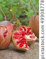 석류 열매 (학명 Punica granatum) 49908778