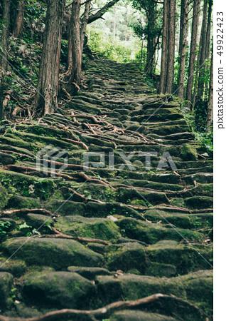 Kumano Kodo Matsumoto Pass 49922423