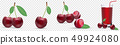 Highly realistic vector ripe juicy cherry, natural texture. Templates advertising juice, healthy 49924080
