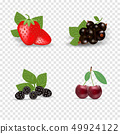 Berry icon set. Black currant, backberry, strawberry and cherry. Berries with green leaves. Organic 49924122