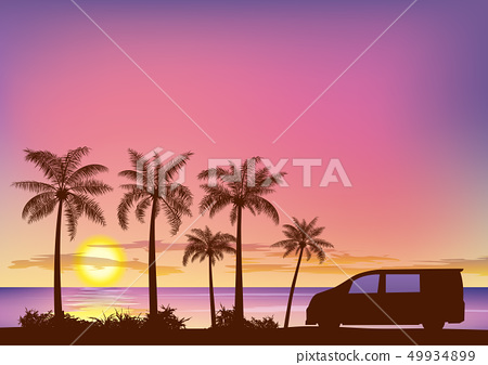 Sunset and palm trees _ drive 49934899