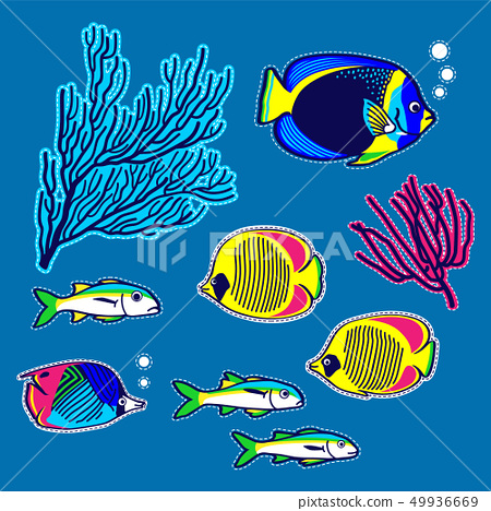 Sea fishes and corals vector items. 49936669