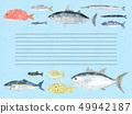 鱼信纸蓝色海波浪蓝色边界 49942187