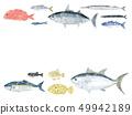鱼信纸 49942189