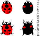 Ladybug 49944421