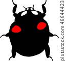 Ladybug 49944423