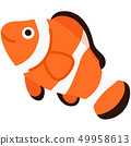 Anemonefish without outline 49958613