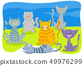 cats and kittens animal characters group 49976299