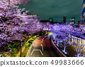 [Tokyo] Cherry blossoms at night 49983666