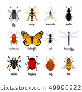 Insects icons 49990922