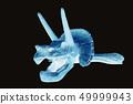 트리케라톱스 머리 뼈 화석 사진 엑스레이 이미지 | 과학 · 생물 | 검정 배경 49999943