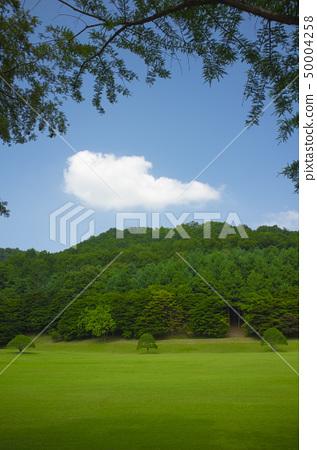 Park in Korea 50004258