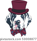 vector spotted dog Great Dane breed 50008877