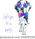 vector spotted dog Great Dane breed 50009599