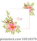 花朵 花 花卉 50018379