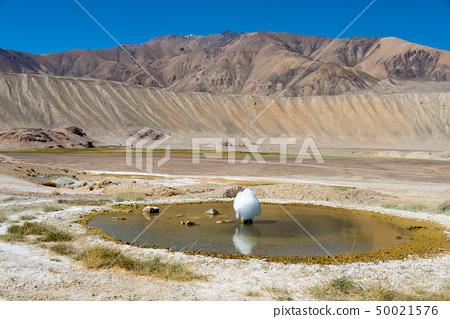 간헐천 · 타지키스탄 국립 공원 타지키스탄 · 파미르 고원 50021576